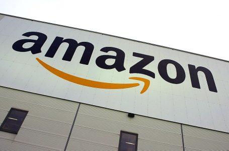 """Países amazónicos rechazan uso del dominio de internet """".amazon"""" sin consentimiento"""