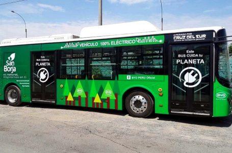 Cruz del Sur incorporará nuevos buses eléctricos en alianza con BYD