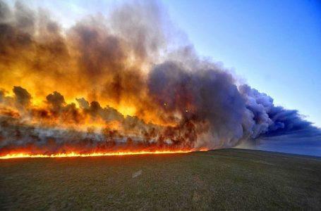 Incendio forestal en la Amazonía de Brasil no se ha extendido a Perú