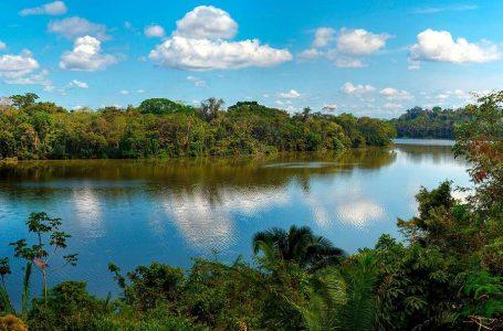 Rainforest Expedition: incendios en Brasil y Bolivia no afectan la reserva de Tambopata