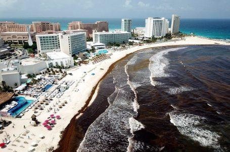 Hoteles del Caribe mexicano exigen reducción de impuestos por el sargazo