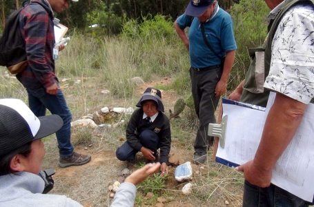 Belmond premia a colegios de Maras y Paruro por plantar 13.000 árboles en Cusco