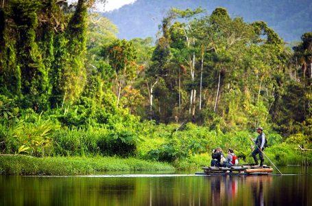 Parque Nacional del Manu es uno de los atractivos que tendrán acceso gratuito este año