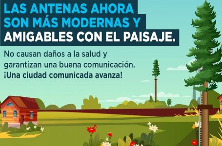 """Antenas """"tipo árbol"""" garantizan una buena comunicación y son amigables con el paisaje"""