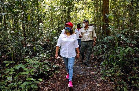 Loreto será una de las primeras regiones en recibir turistas por bajos índices de Covid-19