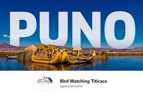 Birdwatching Titicaca: conoce el emprendimiento que revolucionó una comunidad en Puno