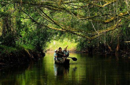 Turismo en áreas naturales protegidas genera US$ 800 millones y 36 mil empleos
