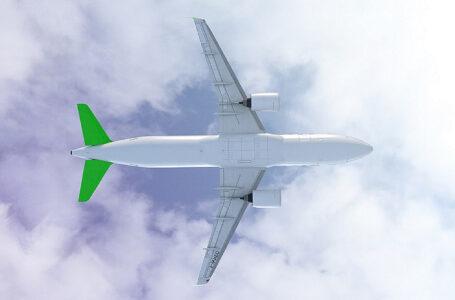 Sky Airline apuesta por aviones modernos para lograr vuelos más ecoamigables