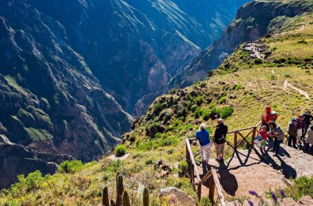 Arequipa: Valle del Colca celebra el retorno de turistas extranjeros