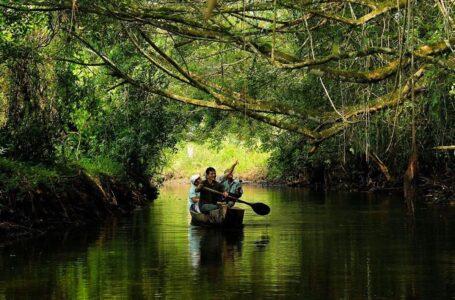 El 100% de áreas naturales protegidas que reciben turistas han sido reactivadas