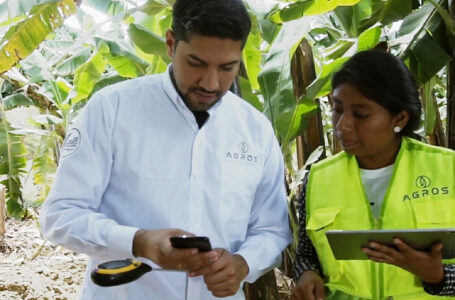 Startup peruana fue reconocida por Premios Latinoamérica Verde 2021